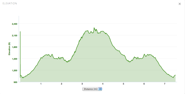 Elevation profile from our hike